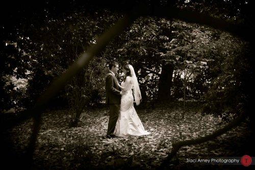 ©2013, Traci Arney Photography